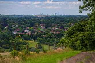 Norbury Park View