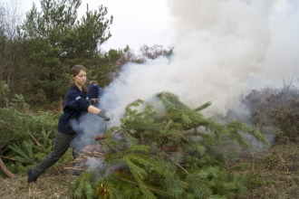 Volunteerconservation trainee burning pine