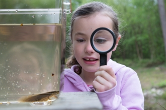 Child examining newt with magnifying glass