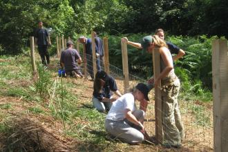 volunteers fencing