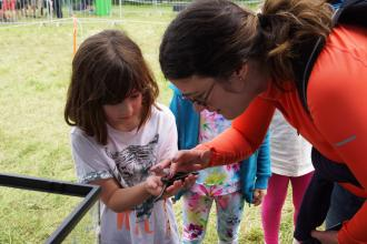 Girl looking at a slow worm at a Surrey Wildlife Trust event