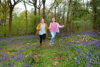 Children running in bluebells