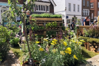 Pop-Up Wildlife Garden in Guildford High Street