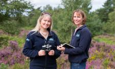 Surrey Wildlife Trust staff monitoring heathland