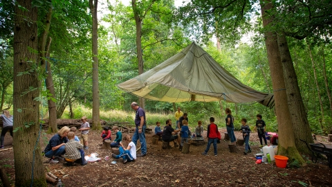 Forest Schools at Nower Wood