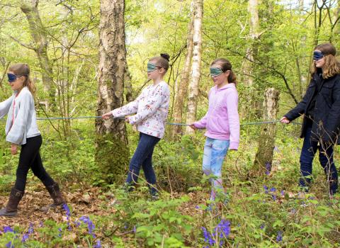 Blind fold trail birthday party at Nower Wood