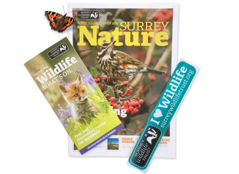 Surrey Wildlife Trust membership pack