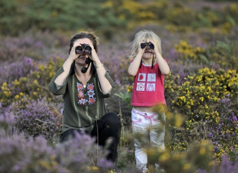 Family birdwatching on heathland